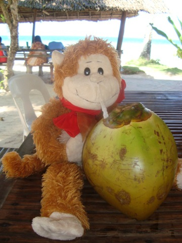 Dave and a coconut